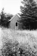 Schieffelin Point, Gouldsboro, Maine