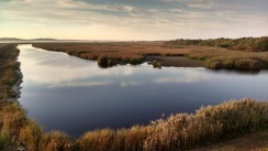 Plum Island Reserve